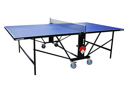 Ping Pong Lion Outdoor
